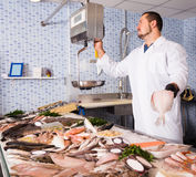 Seller man in white cover-slut standing near fish counter Royalty Free Stock Image