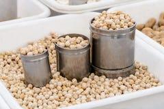 Seller of Peanuts Stock Photo