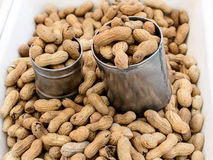 Seller of Peanuts Stock Photography