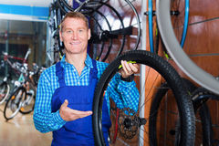 Seller picking new bicycle wheel in sport store Royalty Free Stock Images