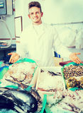 Seller posing near cooled fish. Smiling young seller posing near display with cooled fish and seafood Stock Image