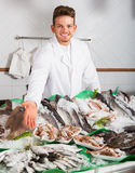Seller posing near cooled fish. Young seller posing near display with cooled fish and seafood Royalty Free Stock Photos