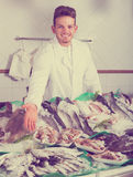 Seller posing near cooled fish. Young seller posing near display with cooled fish and seafood Stock Photo