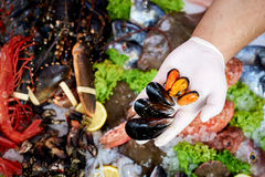 Seller presenting fresh mussels. In fish store stock photos