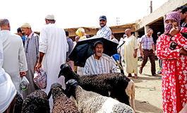 A seller of sheep protects from the sun with an umbrella in the souk of the city of Rissani in Morocco