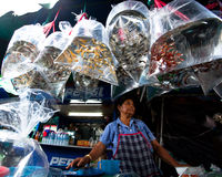 Seller shop at Chatuchak Weekend Market Royalty Free Stock Images