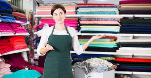 Seller showing assortment. Smiling girl seller showing wide assortment at drapery shop Stock Images