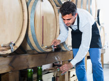 Seller taking wine from wood. Happy male seller in apron taking wine from wood into glass in cellar Stock Images