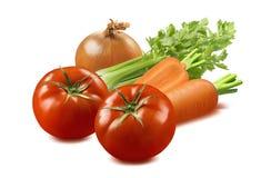 Selleri-, tomat-, lök- och morotgrönsaker som isoleras på vita lodisar arkivbild