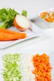 Sellerie, Karotten, Zwiebel und Gemüse Lizenzfreie Stockfotos