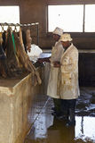 Sellers of meat at Nyongara slaughterhouse in Nairobi, Kenya, Africa Stock Images