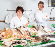 Sellers in the shop. Sell fresh sea fish stock photography