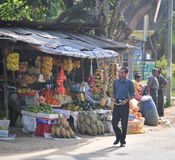 Sellers in street shop sell fresh fruits in Sri Lanka Stock Photography