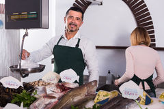 Sellers working in fish store. Middle age seller and his young assistant at the counter in fish store Stock Photography