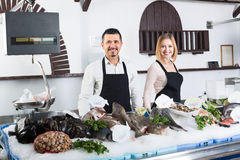 Sellers working in fish store Stock Images