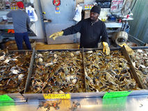 Selling Blue Crabs Royalty Free Stock Image