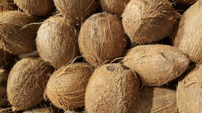 Selling coconuts in shop. Coconuts in pile closeup photo Stock Photography