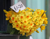 Selling daffodils at market Stock Images