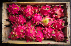 Selling dragon fruit in a wood box photo taken in Bogor Indonesia Stock Photos