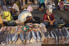 Selling fish Royalty Free Stock Photo