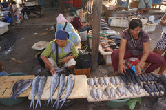 Selling fish Stock Images