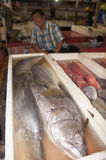 Selling fish Royalty Free Stock Photos