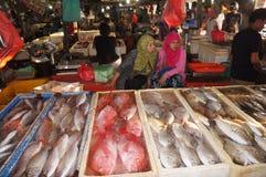 Selling fish Stock Image