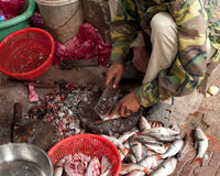 Selling fish at traditional asians eafood marketplace Stock Photo