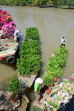 Selling flowers on boat in southern Vietnam Royalty Free Stock Image