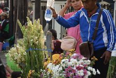 Selling Flowers at market. Residents buy flowers at Peterongan Market Semarang, Thursday June 14, 2018. The most delicious night flowers hunted by buyers of royalty free stock image