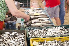 Selling fresh fish on Mediterranean fish market Stock Photo