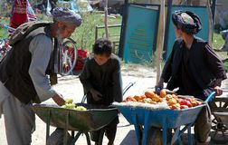 Free Selling Fruit In A Village Near Bala Murghab In Badghis Province, Afghanistan Stock Photos - 164040793