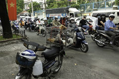 Selling little dogs on overloaded motorcycle at the street of Saigon Royalty Free Stock Image