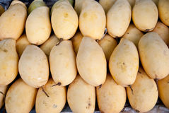 Selling mango in market Royalty Free Stock Photo