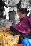 Selling oranges Stock Images