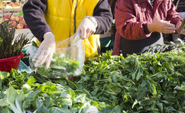 Selling organic vegetables on market. Selling colourful fresh organic vegetables on market royalty free stock images