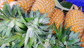 Selling pineapple fruits at rural market Royalty Free Stock Photo