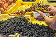 Selling Raspberry in a fruit stand Royalty Free Stock Photo
