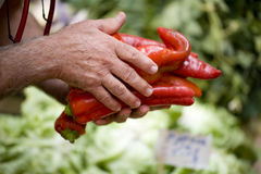Selling red peppers. Man selling red peppers on market stall royalty free stock images