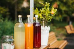 Selling refreshing homemade lemonade. Three bottles of lemonade stand in a row. Berry, orange and lemon with peppermint. Drinks inside the bottles. Benches in Stock Photos