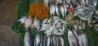 Selling saltwater fishes and prawns on top of banana leaf photo taken in Jakarta Indonesia stock photo