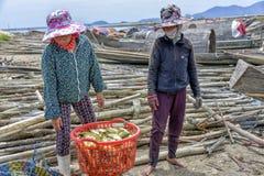 Selling sea food, Hoi An, Vietnam Royalty Free Stock Photo
