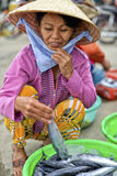 Selling sea food, Hoi An, Vietnam Royalty Free Stock Image