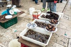 Selling seafood in Bari Stock Photo