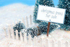 Selling trees Royalty Free Stock Image