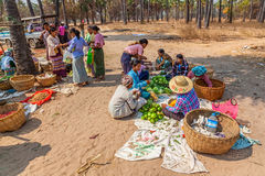 Selling vegetables at the local market Stock Images