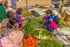 Selling vegetables at the local market Royalty Free Stock Photos