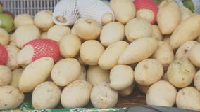 Selling yellow mango on fruit market. Mango fruit on a tray sold on the market stock video footage