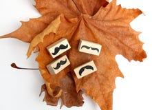Sello de goma de los bigotes Concepto de la conciencia de la salud del ` s de los hombres de Movember Imagen de archivo