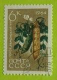 Sello de Rusia del vintage imagen de archivo libre de regalías